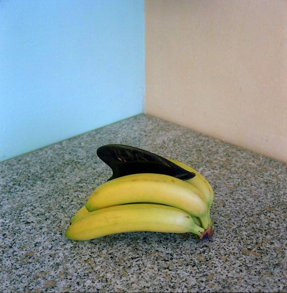 Shark Banana, Graziano Folata
