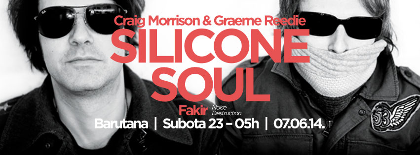 silicon soul