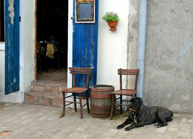 Guide to Zemun's Bars and Cafeterias Part II