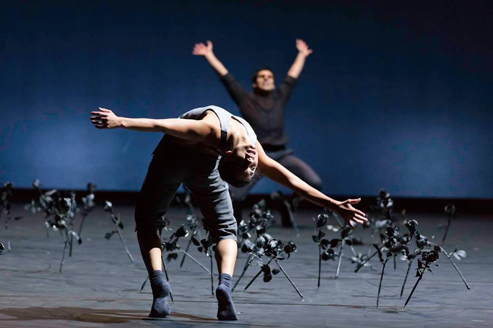 Belgrade Dance Festival 13th Edition